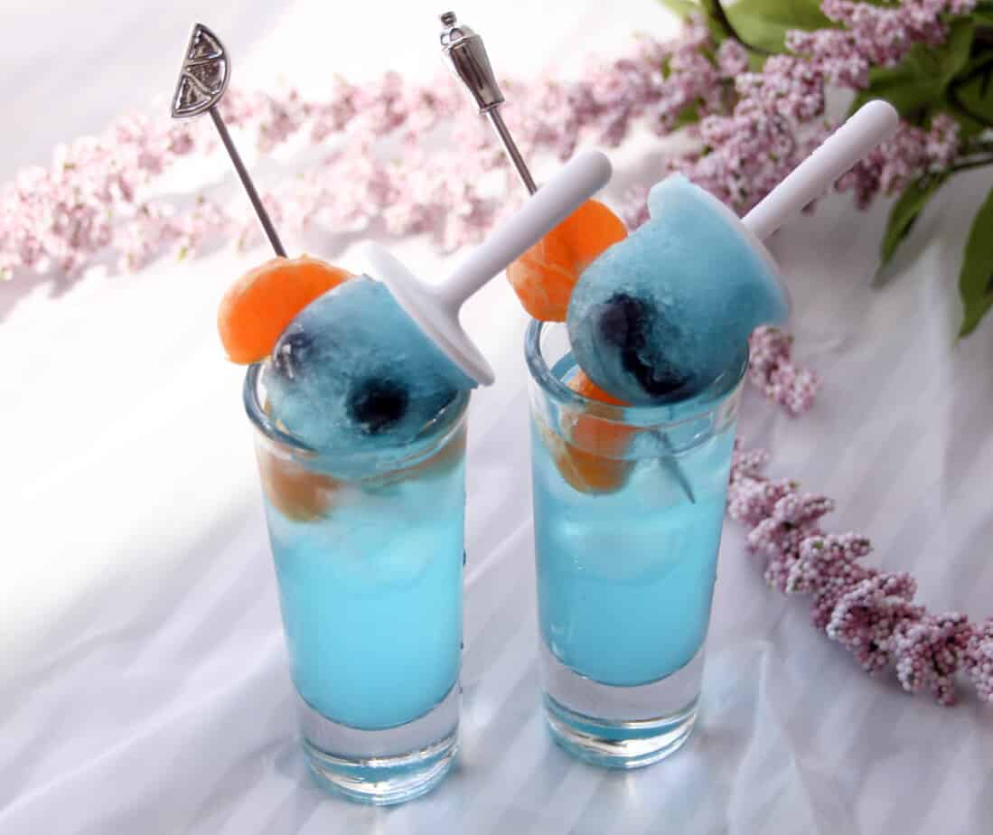 Double Blue Shooters & Blueberry Minisicle-9