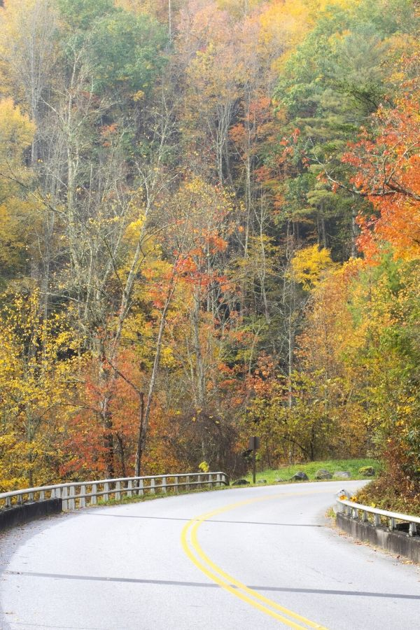 Best Scenic Drives in Tennessee